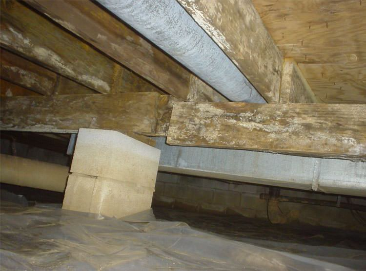 Sagging Crawl Space Problems In Bangor, Portland, Rochester